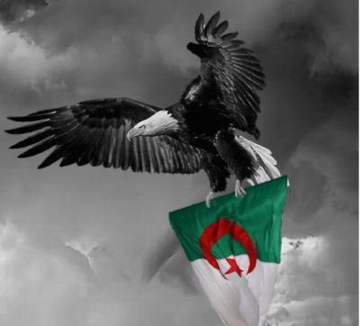 فداك يا وطني ( إلى كل جزائري و جزائرية ) 2387422351_3